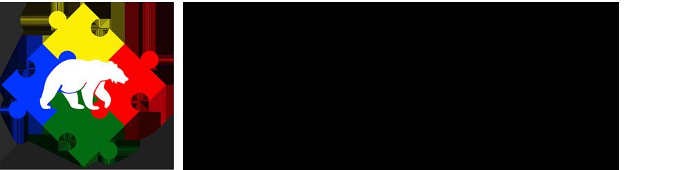 CSS-logo-horiz-black